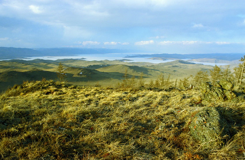 Сибирская тайга для скептиков