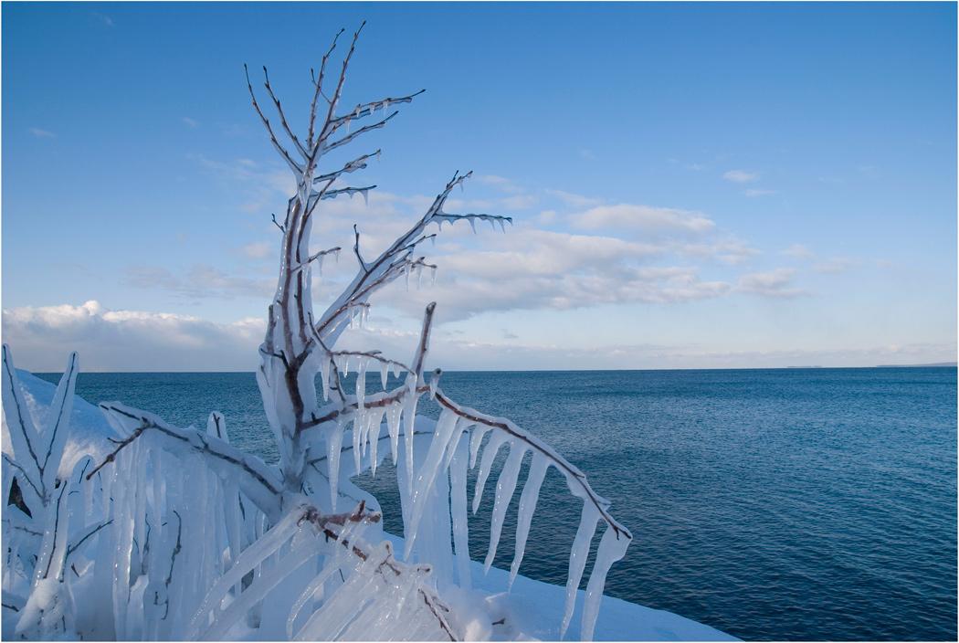 стеклянными природа в ледяном плену фото открытии нового