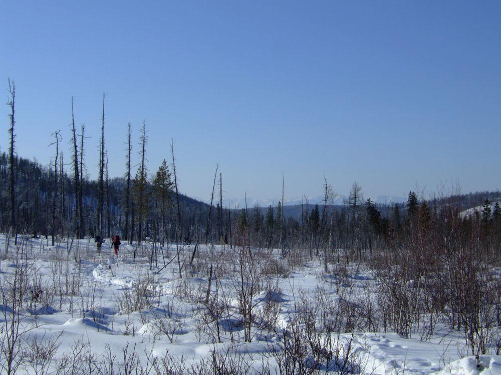 Природа Байкала | Шабартуй 2012