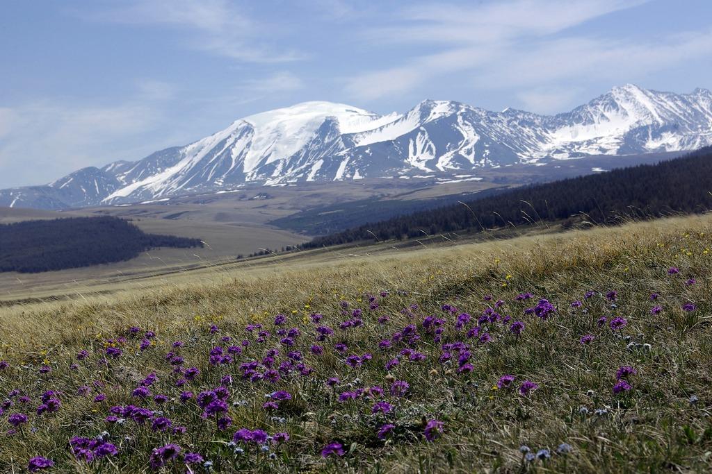 Природа байкала цветущие горы